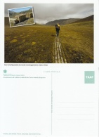 CPM TAAF Sentiers à Crozet Neuf ** - TAAF : Terres Australes Antarctiques Françaises