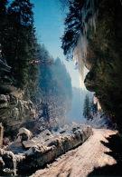 ISERE Vercors Gorges De La Bourne (scan Recto-verso) KEVREN0361 - Vercors