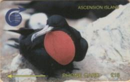 ASCENCION : 003C FRIGATE BIRD L.15 USED - Ascension