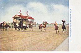 SHEEPSHEAD  BAY,  BROOKLYN  N.Y.  HORSE  RACING  TRACK  1909 - Brooklyn