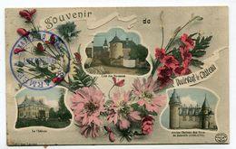 CPA  52 : DOULEVANT Le CHATEAU  Souvenir Multi Vues  Avec Cachet A   VOIR  !!! - Doulevant-le-Château