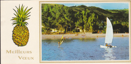 Meilleurs Voeux - Carte Panoramique Double (106 X 215mm) - Ananas Illustré & Plage Fréquentée - Circ 1984 - La Réunion