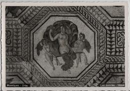 Orbe - Mosaiques - Les Divinites Venus - VD Vaud