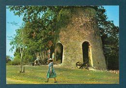 Vestige De Moulin De Sucrerie - Guadeloupe