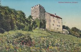 Schloss Habsburg (Aargau) (34) * 14. 7. 1951 - AG Aargau
