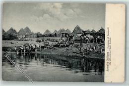 52225192 - Kamelkarawane Fluss Shabelle - Somalia