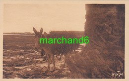 Vendée Croix De Vie Rochers De Sion Transport Du Varech Sur Ane éditeur R Bergevin Ramuntcho N°13290 - Saint Gilles Croix De Vie