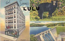 ETATS UNIS : TN : Hotel Saint James Knoxville , Multivues ( Ours Noir ) - Knoxville