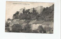 SALMAISE (COTE D'OR) LE CHATEAU DUCAL ET HABITATIONS - Autres Communes