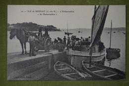 """ILE DE BREHAT - L'Embarcadère """"Ar Embarcadère"""" (Belle Animation, Attelage...) - Ile De Bréhat"""
