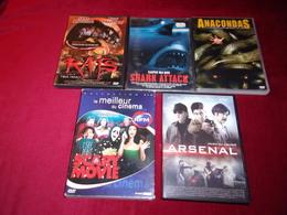 LOT DE 5 DVD   POUR 10 EUROS ( Lot  26 ) - DVDs