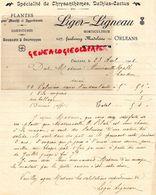 45- ORLEANS- RARE LETTRE MANUSCRITE SIGNEE LIGER-LIGNEAU-HORTICULTEUR-HORTICULTURE-CHRYSANTHEME-DALHIAS CATUS- 1906 - Agriculture