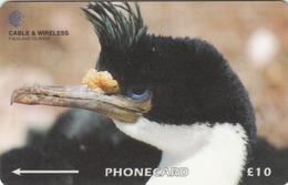 Falkland Islands  Phonecard - (Bird) - Fine Used - Falkland Islands