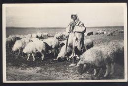 ETHNIC COSTUME JORDAN BEDUIN SHEPHERD OLD POSTCARD - Jordan