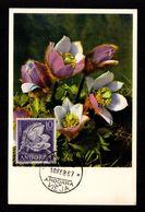 ANDORRE ANDORRA Espagnol Superbe Carte Maximum Fleur 10 Ptas Anémone Des Neiges  10 FEB 67     2 Scan - Spanisch Andorra