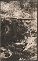 In The Dell, Near Strine's Inn, Bradfield, Sheffield, Yorkshire, 1914 - RP Postcard - Sheffield
