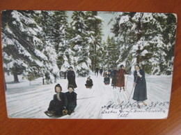Suede , Lugeurs Et Skieurs , Dos 1900 - Suède