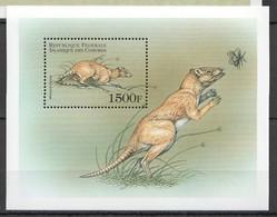 E970 DES COMORES FAUNA ANIMALS PREHISTORIC RODENTS 1BL MNH - Prehistorics
