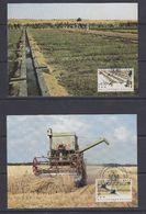 United Nations Vienna 1984 FAO 2v 2 Maxicards (37610) - Maximumkaarten