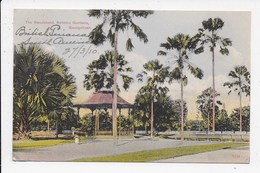 CPA  ANTILLES The Bandstand Botanic Gardens  Georgetown - Vierges (Iles), Britann.