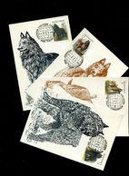 Belgie 2213/16 Dogs Andre Buzin Maximumkaarten OCB 20€ - 1985-.. Oiseaux (Buzin)