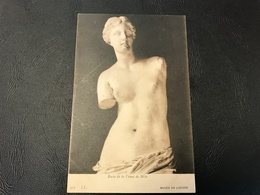 425 - Buste De La Venus De Milo - Musée Du Louvre - Sculture