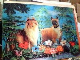 EFFETTO TRIDIMENSIONALE  3 TRE D Japan. CANI DOGS COLLIE E BOXER Old Color Stereo   N1970  GN21729 - Cartoline Stereoscopiche