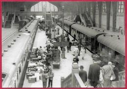 CPM Photographie Jean-Marie Lezec 50 CHERBOURG Manche - Le Hall Des Trains De La Gare Maritime Mai 1962 - Cherbourg