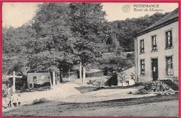 CPA Belgique Belgie PUSSEMANGE (Vresse-sur-Semois) Route De Memeres - Vresse-sur-Semois