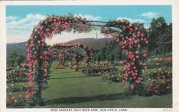 Connecticut New Haven Rose Gardens East Rock Park Curteich - New Haven