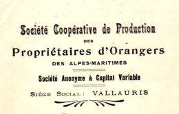 Coopérative Des Propriétaires D'Orangers Des Alpes Maritimes   VALLAURIS  06 - Lettres De Change