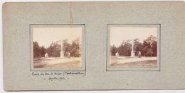 H5 Photo Stéreoscopique Recto-verso - Vers 1900 Fontainebleau Croix Duc Guise -Marthe Emile 1902 Velo - Photos Stéréoscopiques
