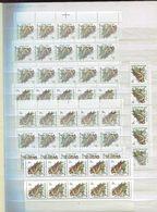 Belgie Andre Buzin Birds ROTAFOLIO Studie Op De Rand-tandingen En Nuances + Paskruis Faciale 710fr / 17.60€ (7 Scans) - 1985-.. Oiseaux (Buzin)