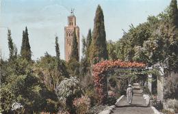 Marrakech Ak124407 - Postcards