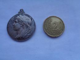 Réf: 98-16-41.              Médaille  PAX      LEO AQUILAM VICIT    !!!! - Belgique