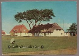(L08)  BRD -(DDR-Zeit) - AK:  Insel Hiddensee - Hiddensee