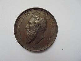 Liège Médaille 1881- 35 Mm-24,5 Gr. - Belgium