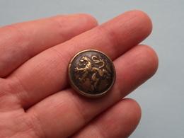 LION - LEEUW ( Knop / Knoop / Button / Bouton ) Van Haeleweyck Bruxelles (?) ( Zie Foto's ) ! - Buttons