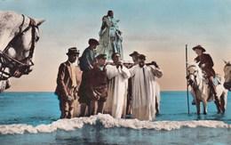 La Camargue Saintes Maries De La Mer Patronne Des Gitans Sur Epaules Guardians Tres Animée - Saintes Maries De La Mer