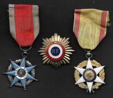 Lot De 2 Médailles ( Mérite Social Et Mérite Agricole ) Et 1 Insigne (Conseil Municipal ) - Army & War