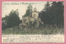 57 - LAGRANGE - Chateau - Umgegend Von DIEDENHOFEN - Nels Couleur Lothringen Série 101 N° 5 - Environs De THIONVILLE - France