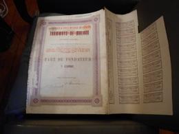 """Part Fondateur""""Transports Et Force Motrice En Espagne Anc Tramways De Malaga""""1898 Modifie En 1905. - Chemin De Fer & Tramway"""