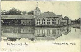 Environs De Bruxelles. Wisbecq. Château D'Arenberg. Nels. - Rebecq