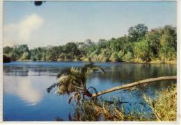 ZIMBABWE  ZAMBEZI RIVER 5 KM ABOVE THE VICTORIA FALLS - Zimbabwe
