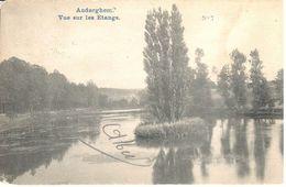 Bruxelles - CPA - Auderghem - Vue Sur Les Etangs - Bossen, Parken, Tuinen