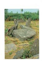 Cpm - 56 - Monteneuf - Monument Mégalithique Allée Couverte De La Loge Morinais - Pierre - France