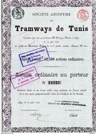 TRAMWAYS De TUNIS - Chemin De Fer & Tramway