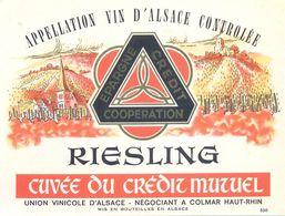 1 Etiquette Ancienne De VIN - RIESLING CUVEE DU CREDIT MUTUEL - UNION VINICOLE D'ALSACE A COLMAR - Riesling