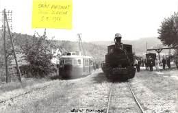 07 - ARDECHE / 07874 - Saint Fortunat - Cliché Original Bazin - Train En Gare - France