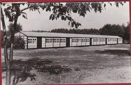 Opoeteren Maaseik Belgisch Limburg Heidedael Jeugverblijf Kamp 1975 Gruitrode Heidedal - Maaseik